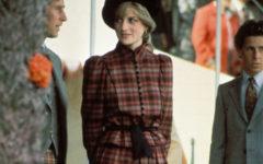 Cuadros Diana de Gales