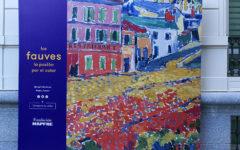 Exposición Les Fauves