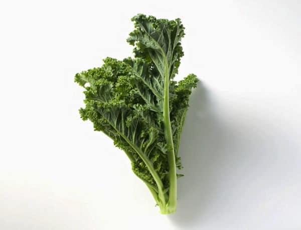 Kale foto: gtresonline