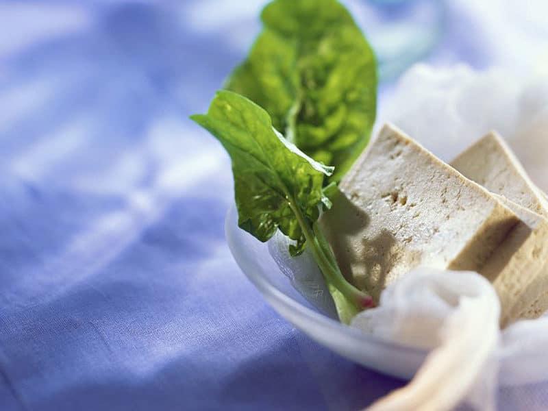 El tofu es un alimento con muchísimas propiedades, perfecto para sustituir los lácteos. Foto:gtres