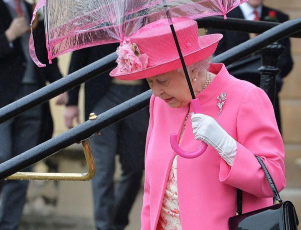 rosa para dias de lluvia
