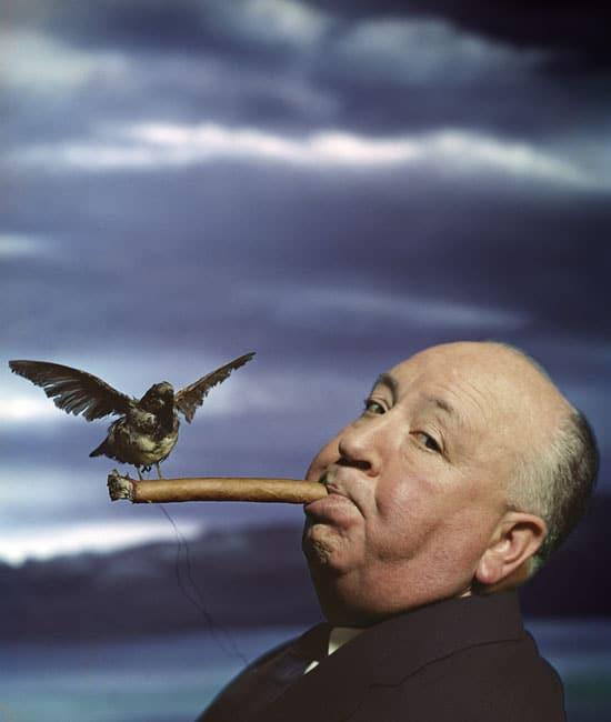 philippe-halsman-retrato-de-alfred-hitchcock-para-la-promocion-de-la-pelicula-the-birds-1962-musee-de-l-elysee-c-2016-phil