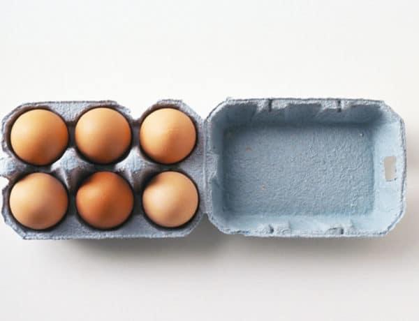 Comer huevos después de los 50 es muy aconsejable. Foto:gtres
