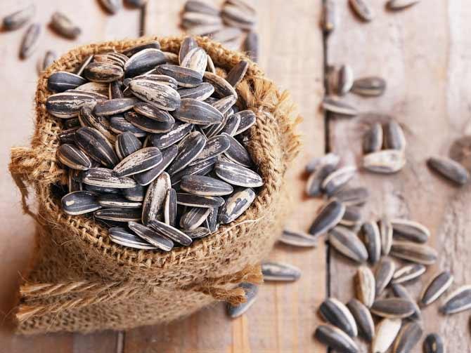semillas bio