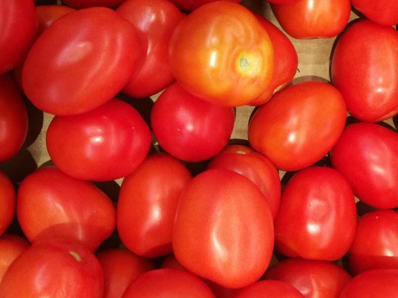 propiedades del tomate cherry kumato