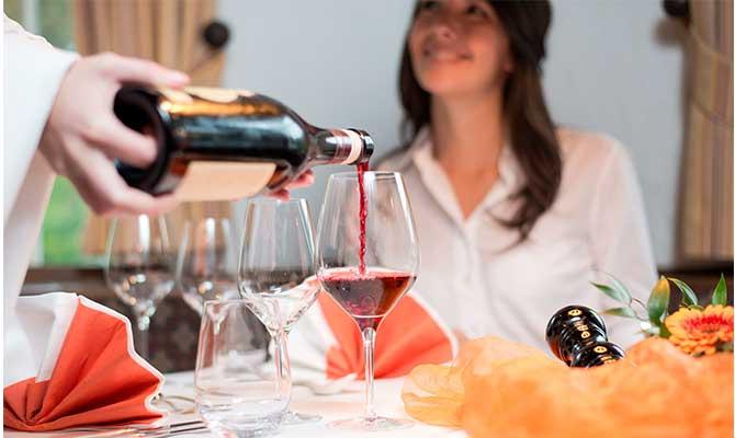 cata de vino para principiantes