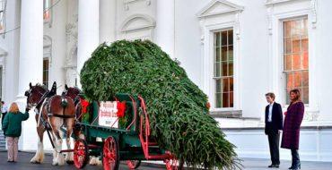 Decorar una casa para Navidad