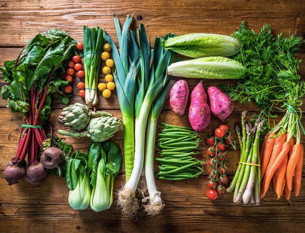 alimentación y cancer