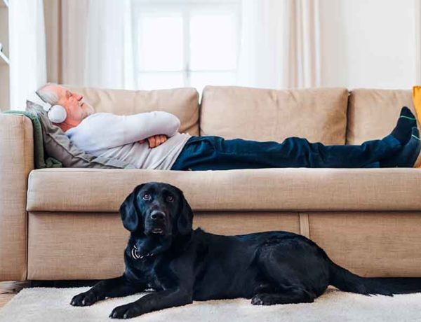 elegir un sofá