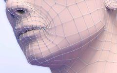 tratamiento facial el método Indiba