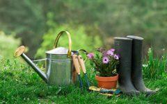 consejos de jardinería