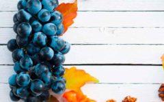fruta y verdura octubre