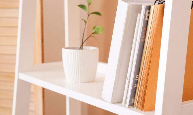 estanterías con libros para ahorrar energía